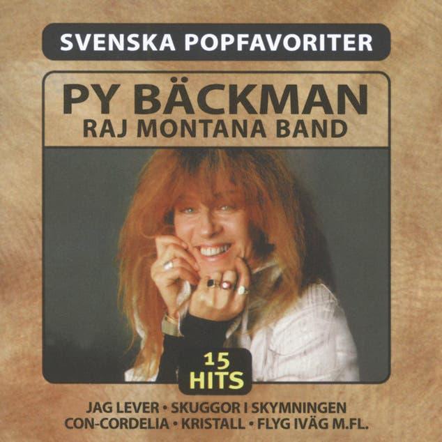 Raj Montana Band image