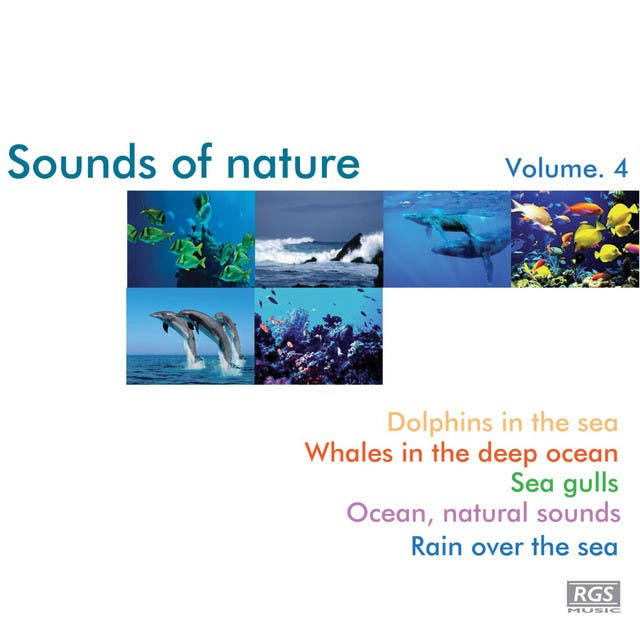 Sounds Of Nature Volume 4