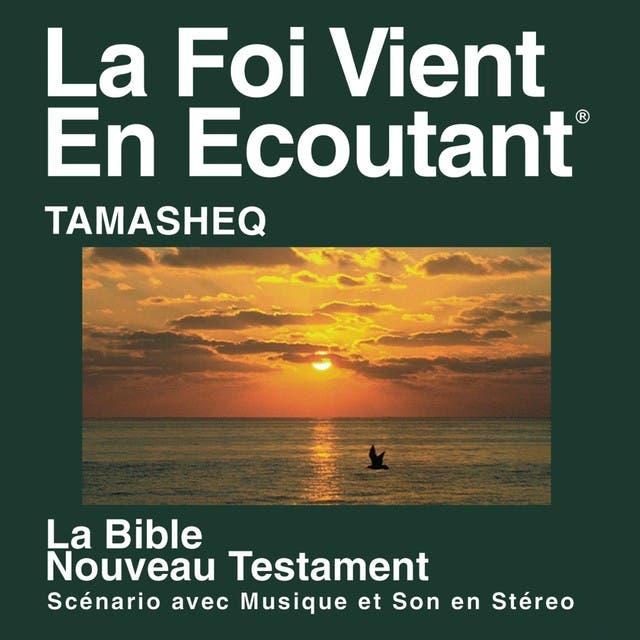 Tamasheq Du Nouveau Testament (Dramatisé) - Tamasheq Bible