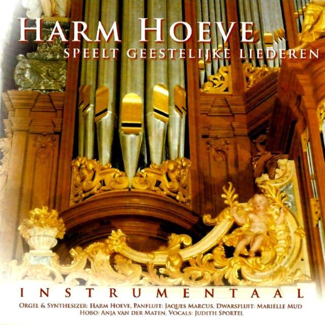 Harm Hoeve image