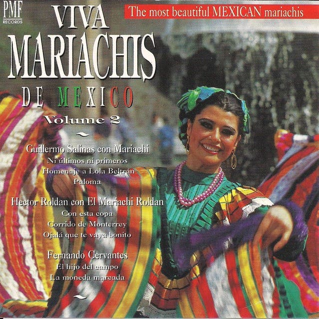 Viva Mariachis De Mexico, Vol. 2