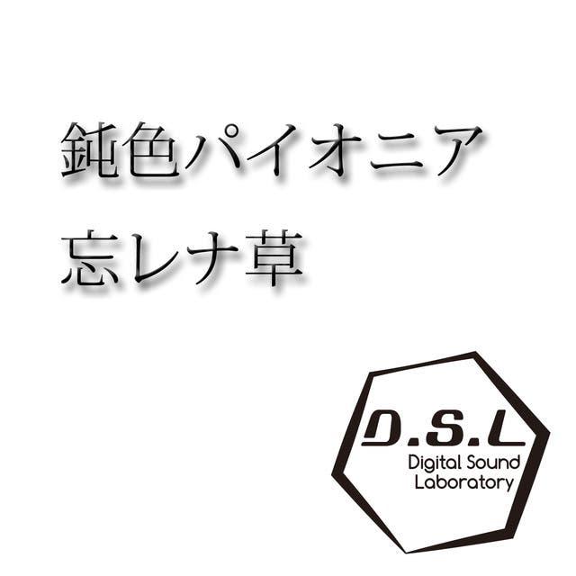 D.S.L
