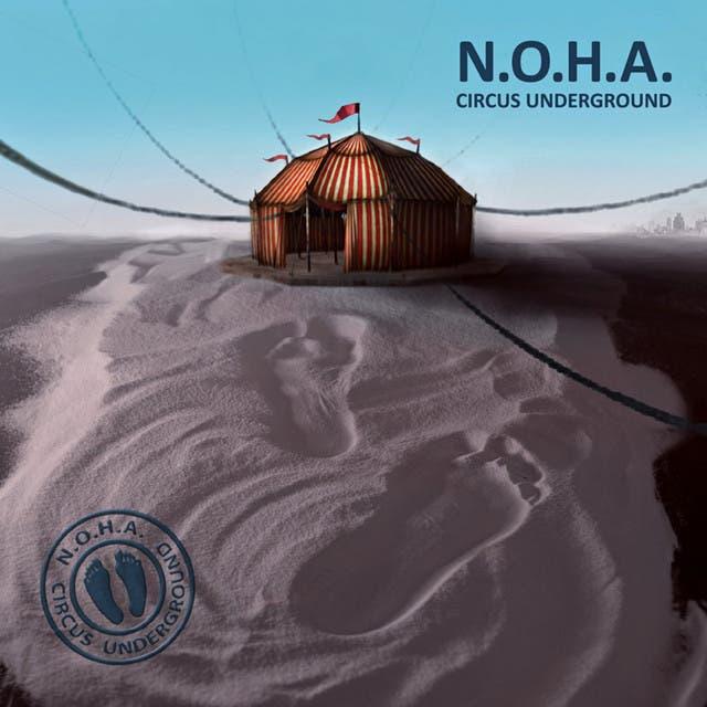 N.o.h.a. image