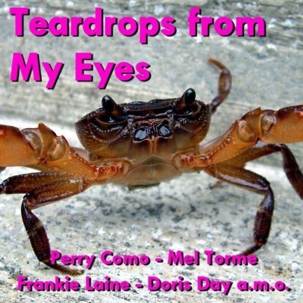 Teardrops From My Eyes
