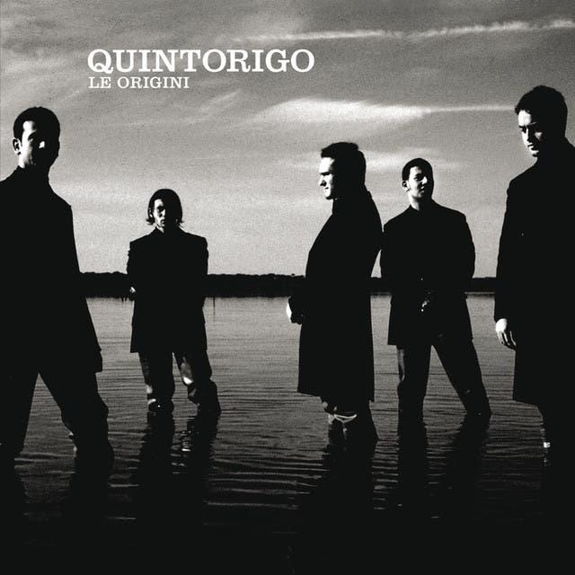 Quintorigo image