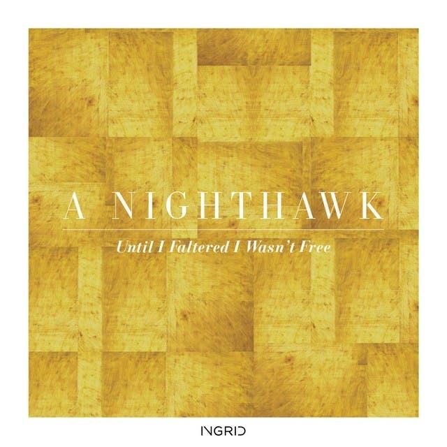 A Nighthawk image