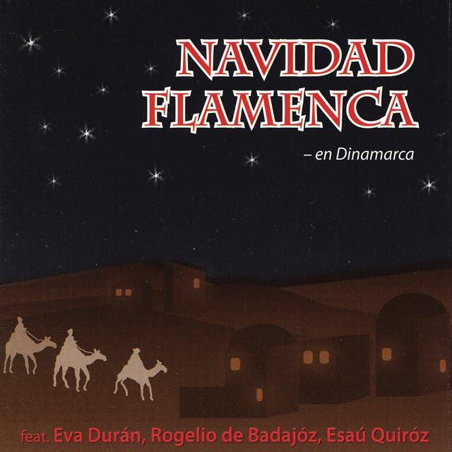Navidad Flamenca image