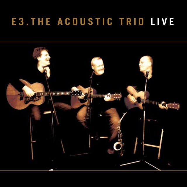 E3 The Acoustic Trio image