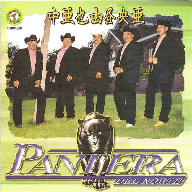 Pantera Del Norte