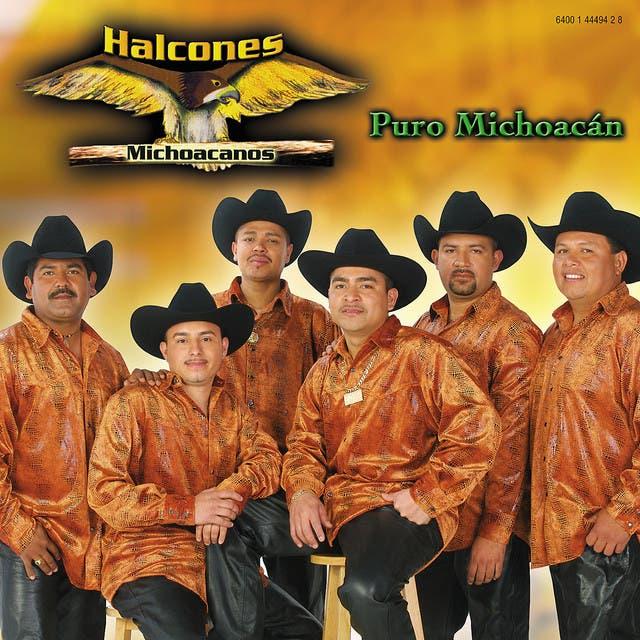 Halcones Michoacanos image