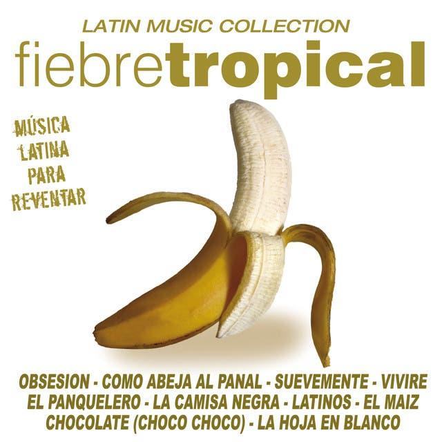 La Banda Del Caribe image