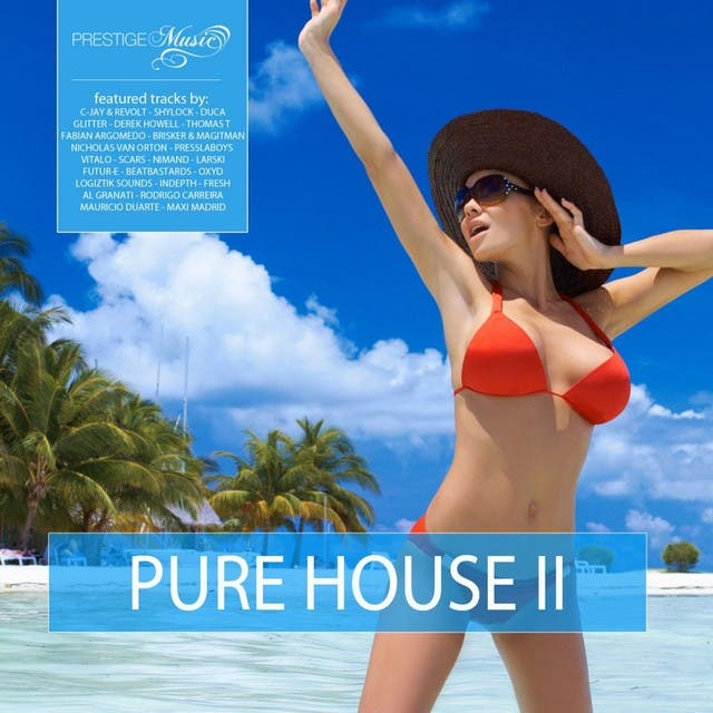 Pure House Vol. 2