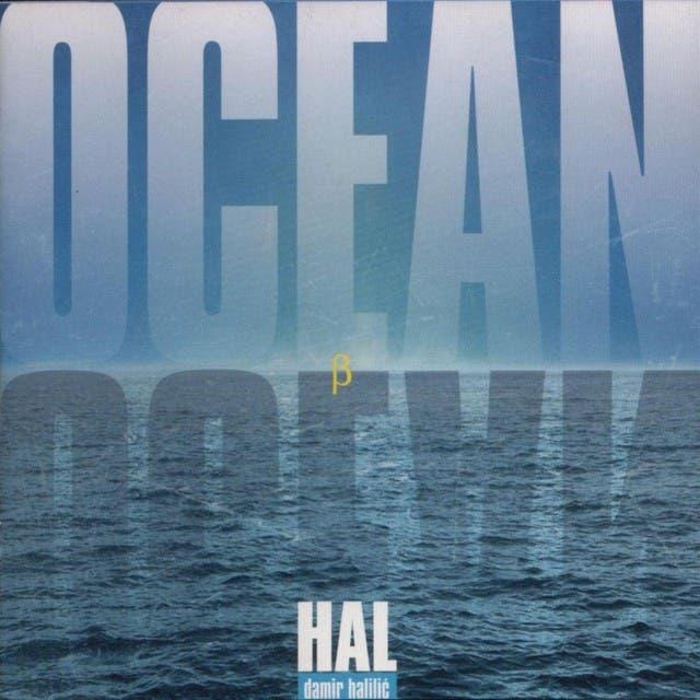 Damir Halilic-Hal