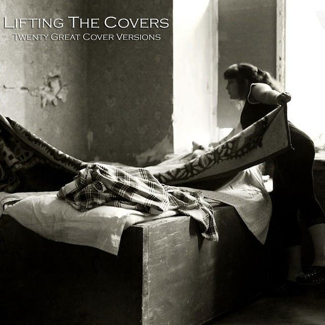 Lifting The Covers (Twenty Great Cover Versions)