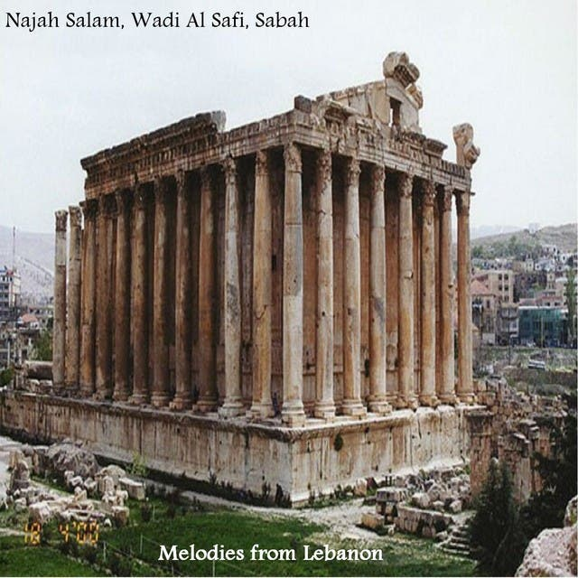Najah Salam image