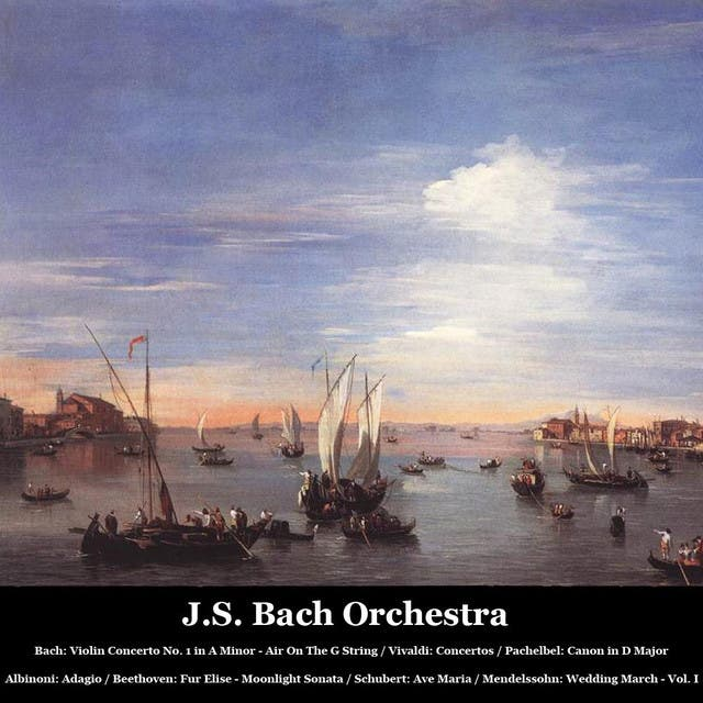 J.S. Bach Orchestra