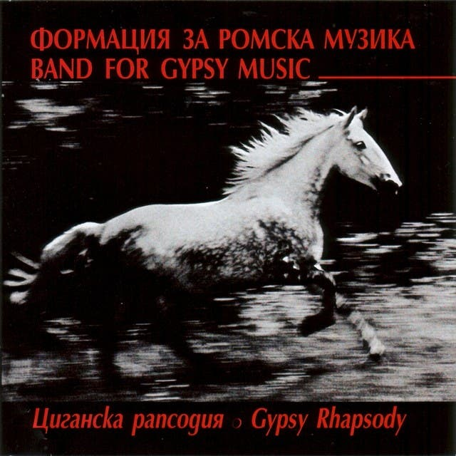 Band For Gypsy Music image