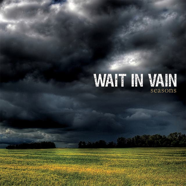 Wait In Vain