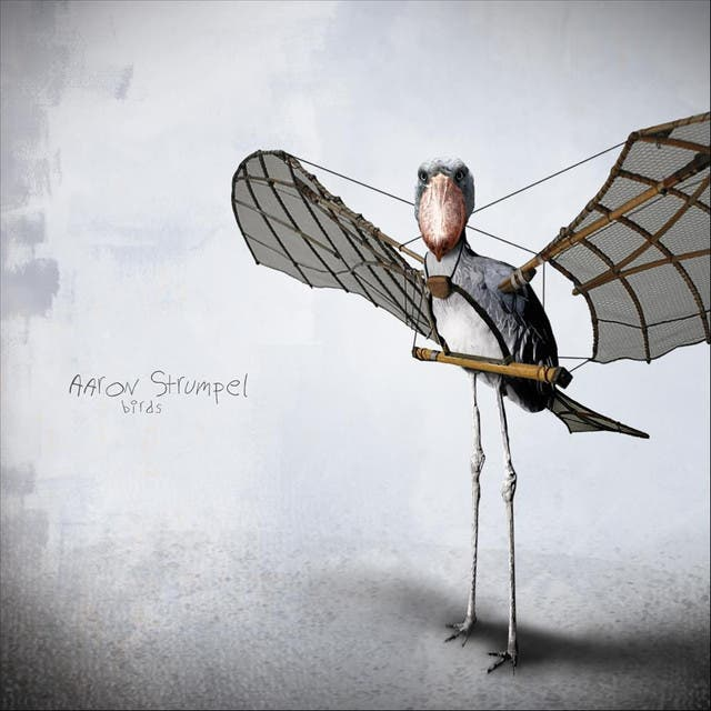 Aaron Strumpel image