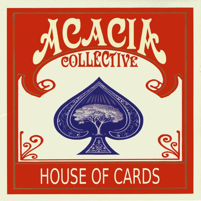 Acacia Collective image