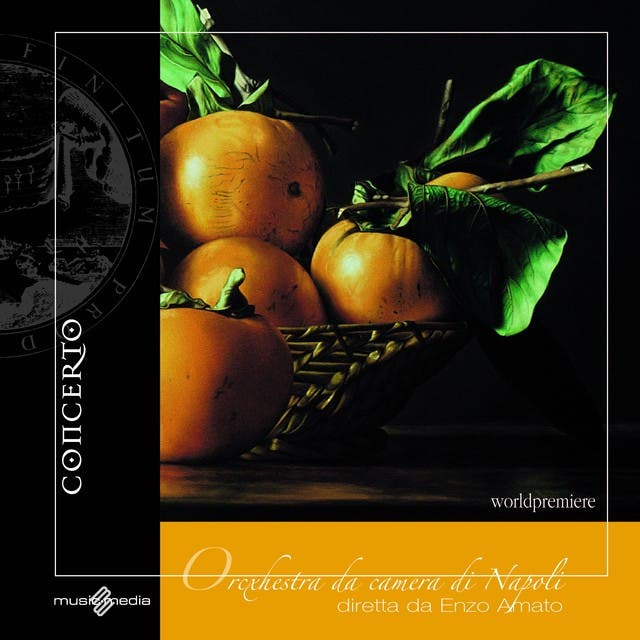 Naples Chamber Orchestra image